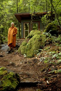 Meditating monks gather no moss