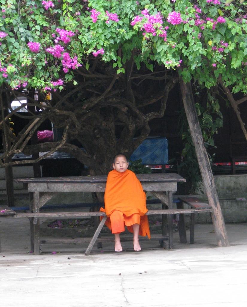 Novice Monk at Wat Sensoikharam, Luang Prabang