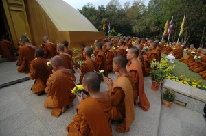 Monks Chanting at Wat Nong Pah Pong