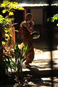 Forest Monk at Wat Pah Nanachat