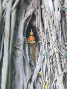 Phra Jao Nang Gone –Hang Dong (the Beehive Buddha)