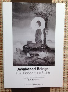 Cover of Awakened Beings